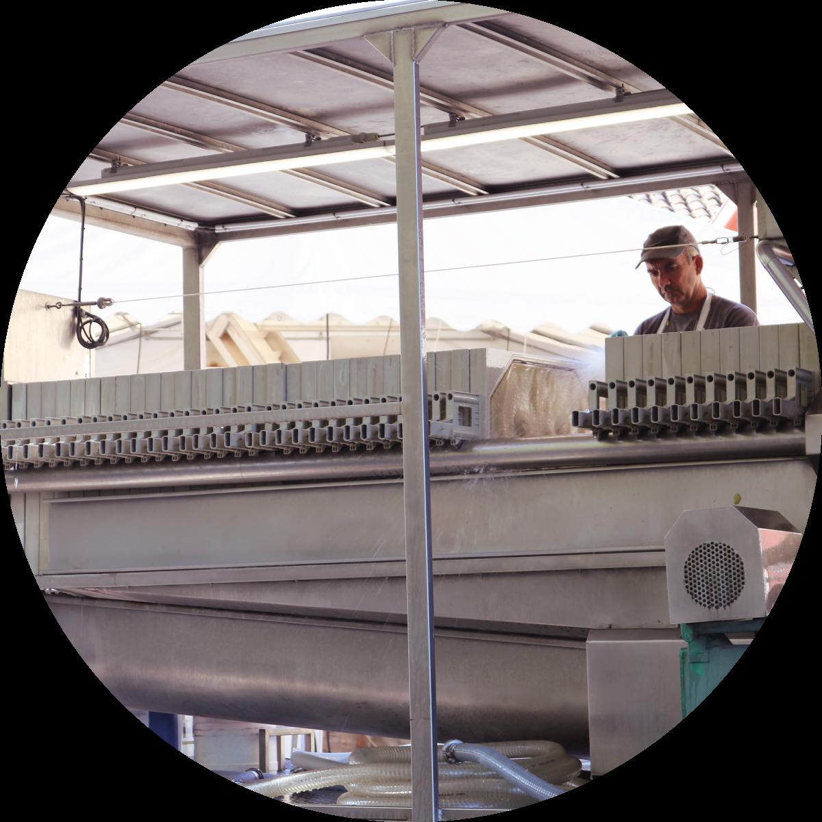 Wine filtration: filter press