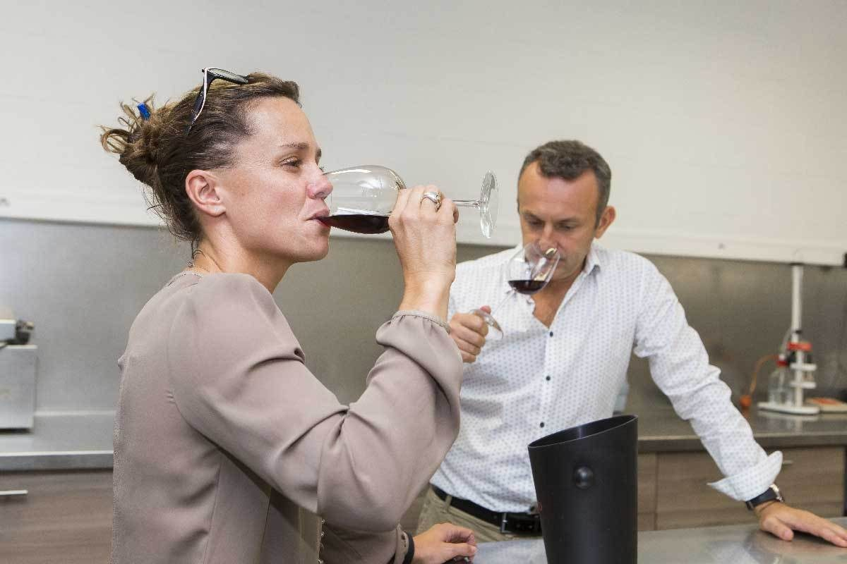 Paetzold Bordeaux 162931